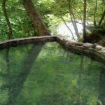 ぬるめのお風呂でリラックス Relax in a warm bath
